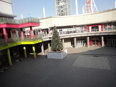 20091225trees_0014_3