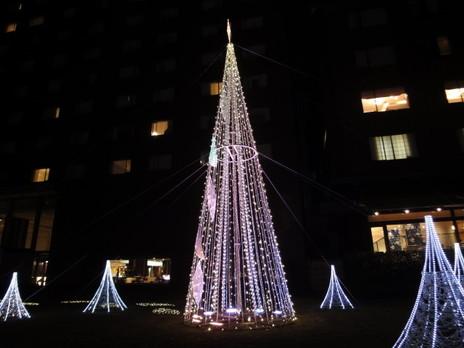 20091225trees_0018